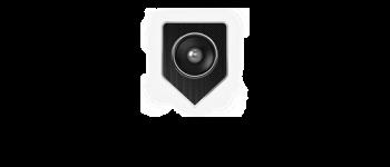 Arena Logo Medium Black Lettering