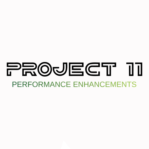 Project 11 For Website